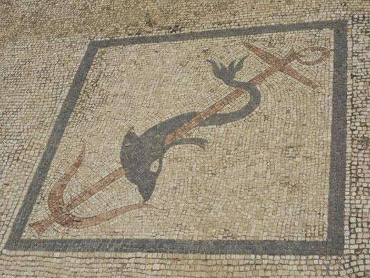 Delfin-Mosaik