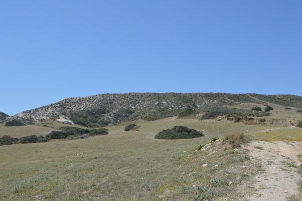 Weg von der Kapelle Agia Kyriaki, links dem Bachbett entlang, oder rechts bis zu den drei Bäumen und dann links den Pfad entlang