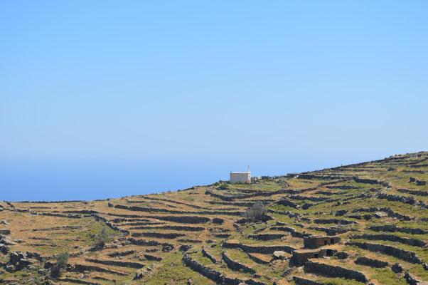 Terrassenfelder an der Panoramastrasse