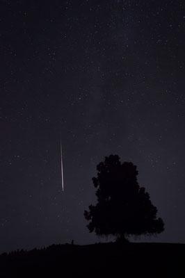 D7000  |  f/4  |  8s  |  ISO-6400  |  15mm  |  Perseiden-Meteorit