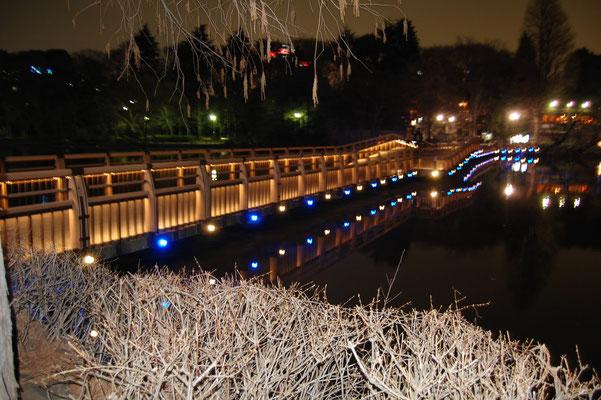 井の頭恩賜公園七井橋LED化工事