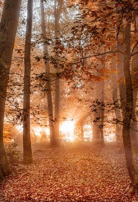 Sonnenaufgang in der Margarethenschlucht