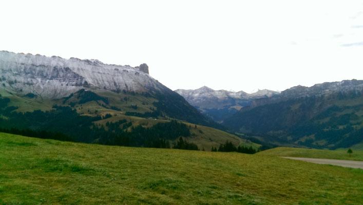 Ein kühler Start für den Holz- und Weideputztag 2016