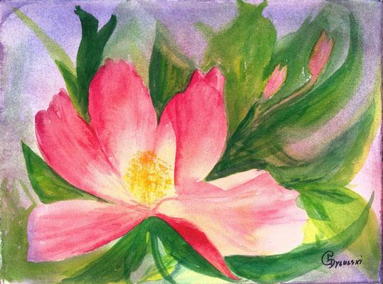 Pink Peony by Pat Dygulski