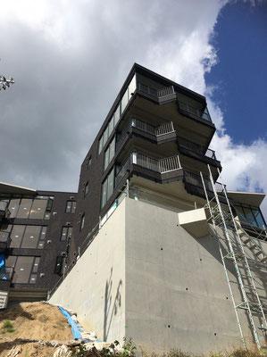 地上7階程度はある建物本体、足場が払れて圧巻の光景
