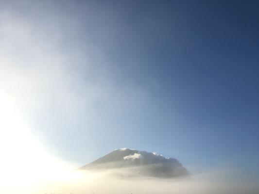 早朝、すごい霧が!羊蹄山がラピュタみたいなことに!!