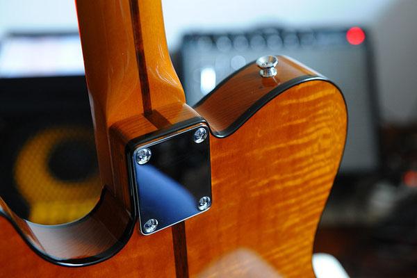 H.S. Anderson Madcat Guitar - Le Prinz