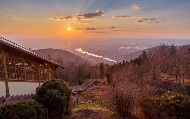 Abendstimmung auf dem Heidelberger Königstuhl