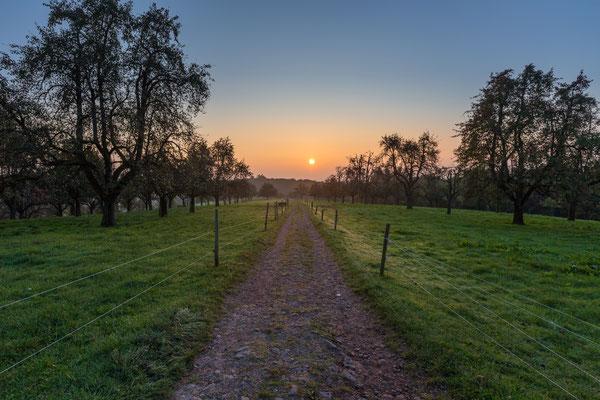 Sonnenaufgang am Kohlhof