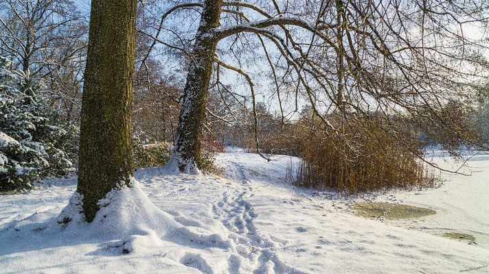 Park verschneit