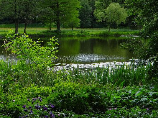 Ein Park am See
