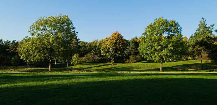 Wiesen-Wanderwege-Naturlandschaft