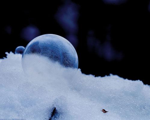 Gefrorene Seifenblase-Blaustich-dunkler Hintergrund