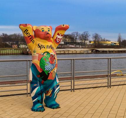 Berliner Bär in Spandau