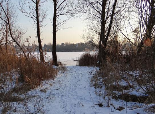 Verschneiter Weg zum See