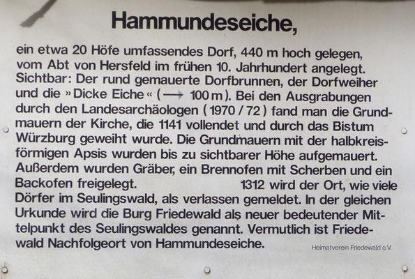 Hamundeseiche bei Friedberg
