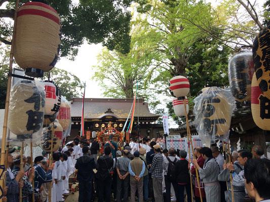 佐倉の秋祭り 麻賀多神社 宮出し写真
