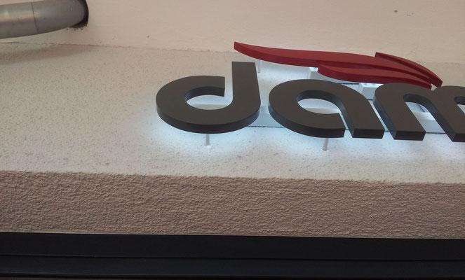 Beispiel - Rückleuchter (Vollacrylglas-LED-Buchstaben) - damfastore