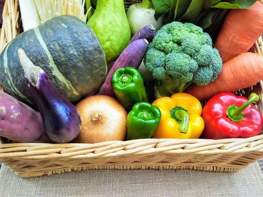 野菜が足りないとどうなる?野菜不足が懸念される理由