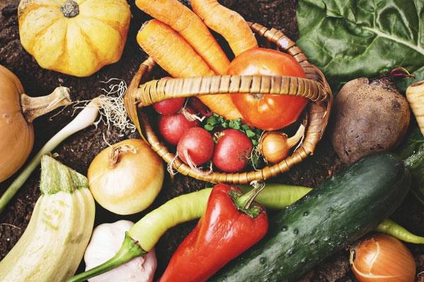 ピクルスと漬物は食べ方に違いが!それぞれの特徴についてもご紹介