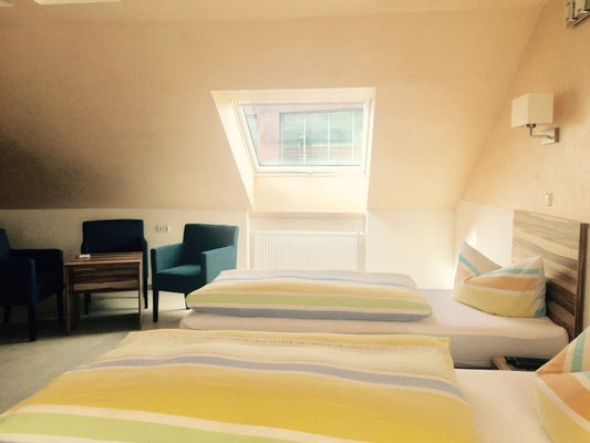 3 persons room, Hotel am Hafen, Mannheim