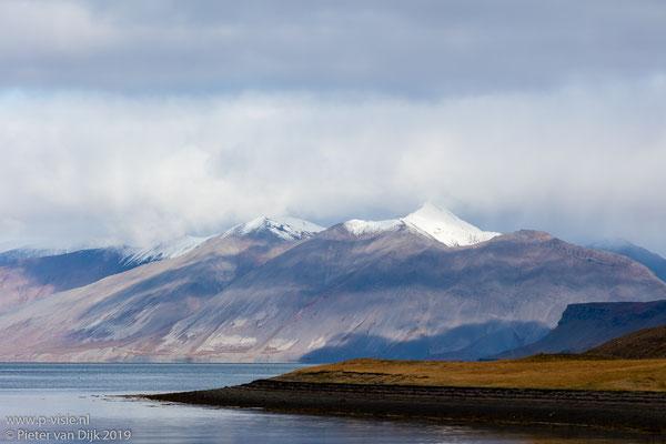Suðurfiðir