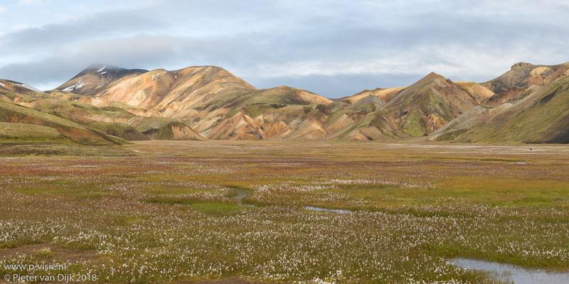 Ryolietbergen en dal met veenpluis