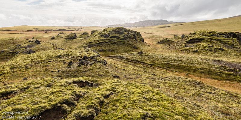 Landschap met lava en mos langs de F208