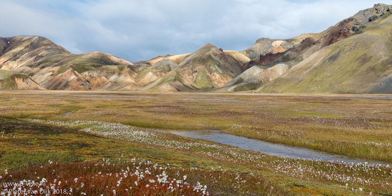 Ryolietbergen met veenpluis