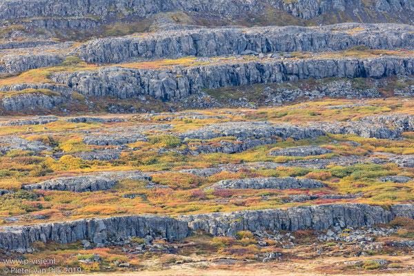 Bergwand met herfstkleuren