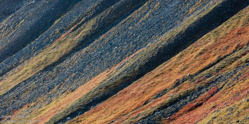 Herfstkleuren op bergwand