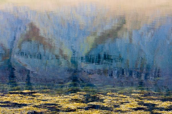 Reflectie in Suðurfiðir