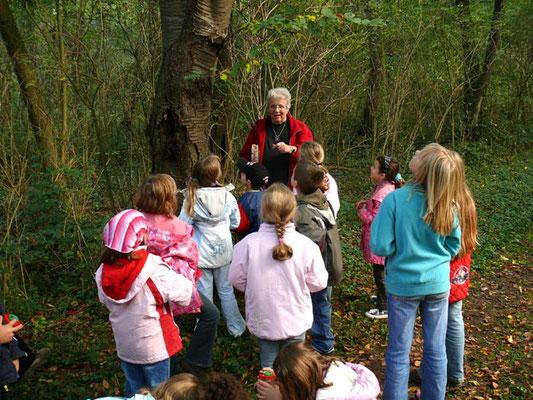Kindergruppe im Wald (Foto: Achim Schumacher)