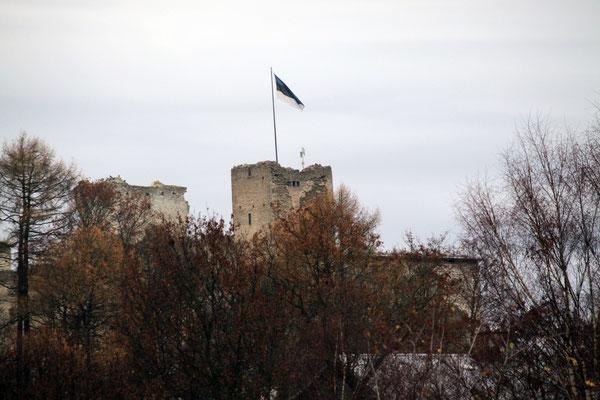 Burg Wesenberg der livländischen Schwertbrüder, nördlichste Burg des Deutschen Ordens, Sitz einer Vogtei