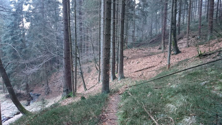 Verbindungsweg zwischen den Meilerplätzen am Aschenbach (Hämmern)