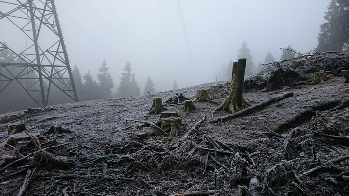 Archäologische Untersuchnungen an der 380 kV Leitung (Goldisthal)