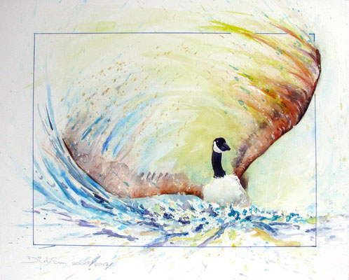 gans, aquarel