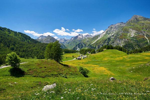 Bergwelt Maloja