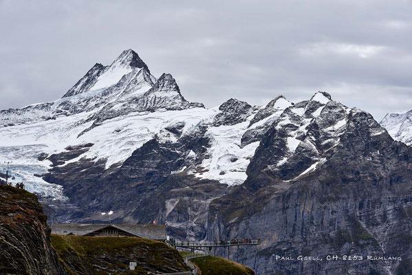 Blick auf First und Schreckhorn im Berner Oberland