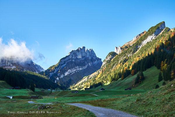 Appenzeller-Sämtis (Alpgenossenschaft) mit Blick Richtung Alpstein - #3435