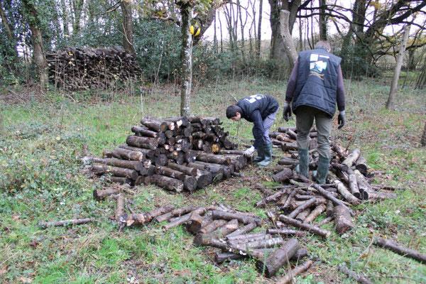 Réalisation de tas de bois © Alexandre Boissinot
