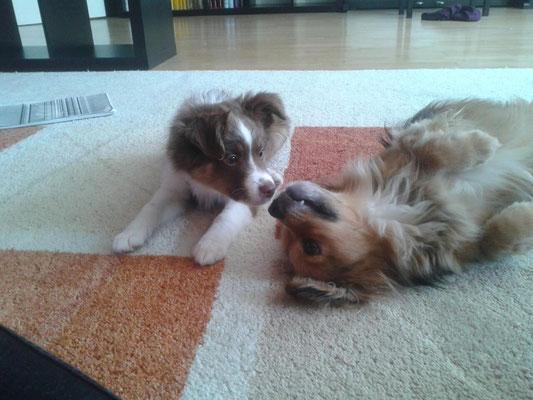 Ico und Juno