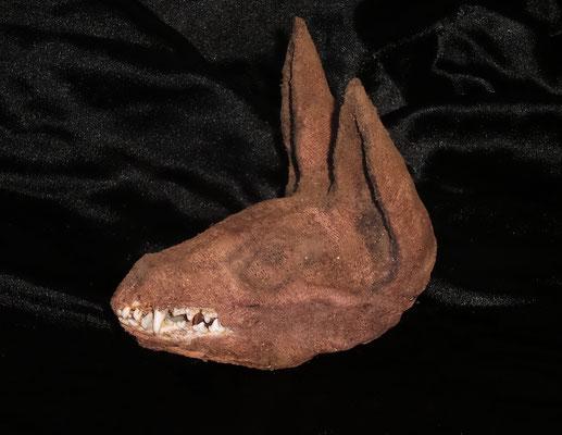 Mummified head Anubis (Egyptian) ✯ Cabeza Anubis momificada (Egipcia) Oddities