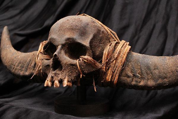 Cráneo ( NAGA ) Skull (R)