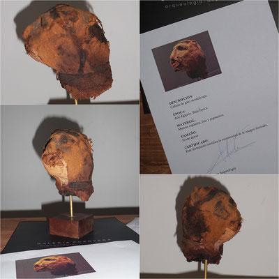 Cabeza gato momia egipto (100% Original - Certificado) ✯ Egypt mummy cat head (100% Original - Certificate)
