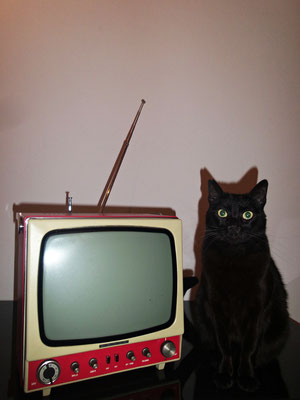 TV Vintage Lavis 511