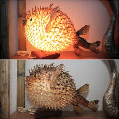 Antigua lampara pez globo / Old globefish lamp (Oddities)