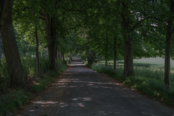dem Viererfeld entlang, auf dem Studer-Weg.