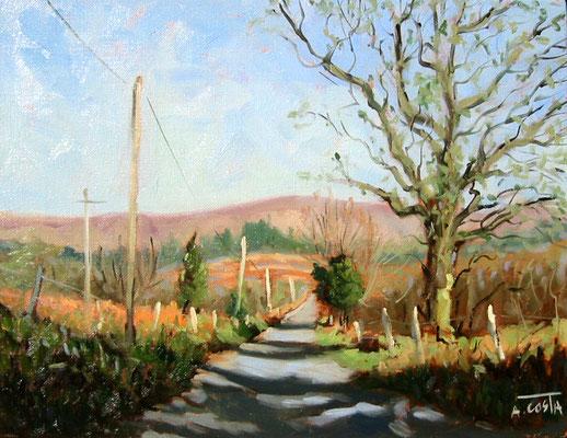 Wicklow road
