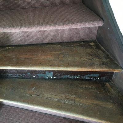 Treppe Ochsenblut schleifen Gisterheide Kleinmachnow bei Berlin